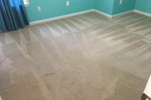VA Realtors Carpet Cleaning