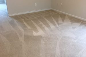 Carpet Cleaning Stafford VA