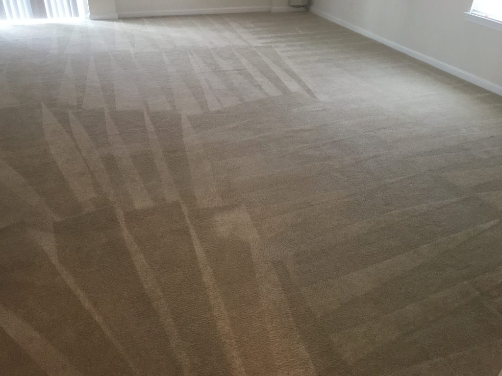 Spotsylvania VA Carpet Cleaning