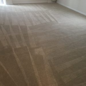 Fredericksburg VA Steam Carpet Cleaning