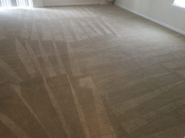 Fredericksburg VA Steam Carpet Cleaning